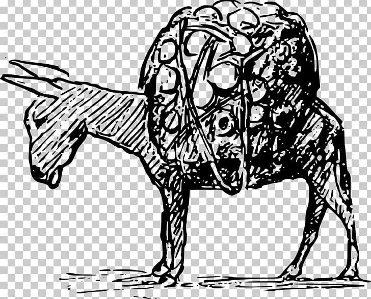 Drawing PNG, Clipart, Animal, Art, Carnivoran, Cartoon, Cat Like Mammal Free PNG Download