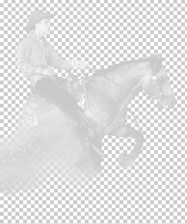 Rein Mustang Mane Stallion Halter PNG, Clipart, Black And White, Bridle, Fei Qinyuan, Halter, Horse Free PNG Download