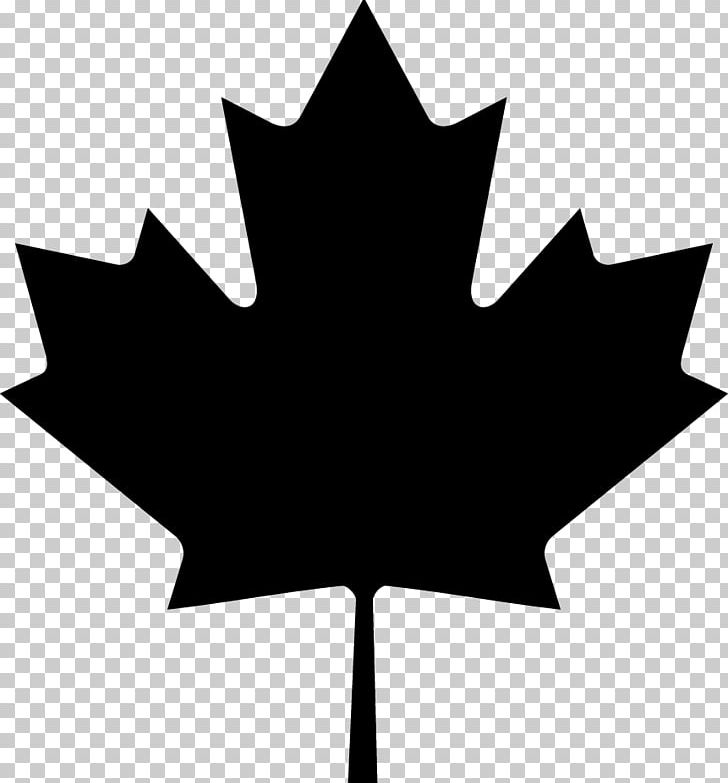 Flag Of Canada Maple Leaf PNG, Clipart, Black And White, Canada, Flag Of Canada, Flower, Flowering Plant Free PNG Download