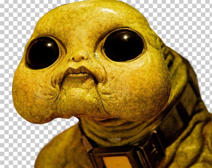Ninth Doctor Slitheen Youtube Rose Tyler Png Clipart 1 V 1 Beak Doctor Doctor Who Doctor