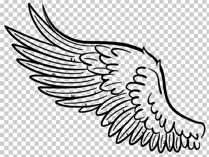 Buffalo Wing Drawing Art PNG, Clipart, Angel Wing, Art, Art Museum, Arts, Artwork Free PNG Download