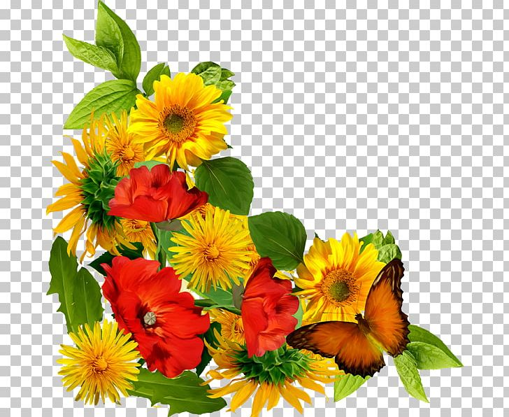 Flower Png Clipart Abstract Lines Annual Plant Daisy