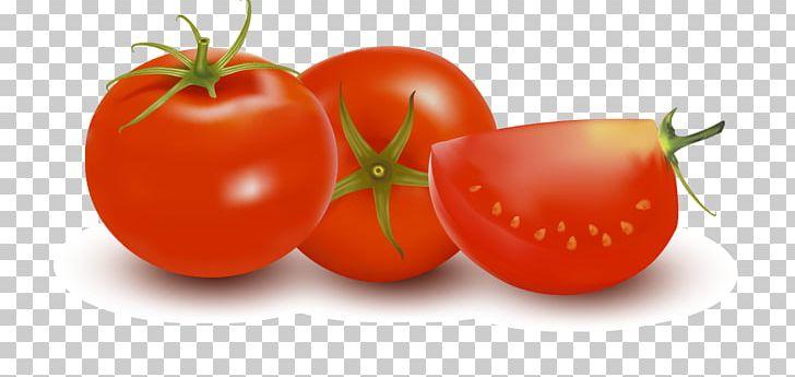 Plum Tomato Vegetarian Cuisine PNG, Clipart, Bush Tomato, Encapsulated Postscript, Food, Fruit, Ketchup Free PNG Download
