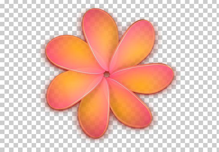 RapidWeaver Petal PNG, Clipart, Art, Flower, Peach, Petal, Rapidweaver Free PNG Download
