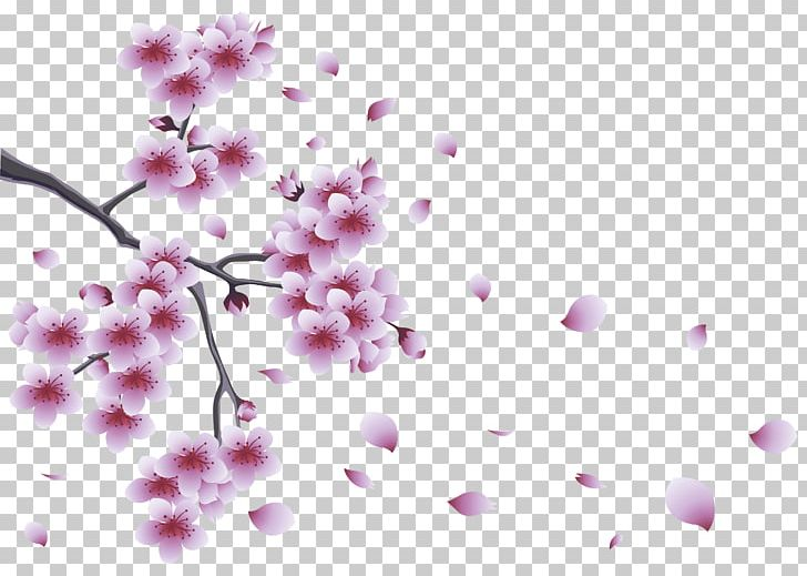 Flower Spring Branch PNG, Clipart, Blossom, Branch, Cherry Blossom, Clipart, Clip Art Free PNG Download