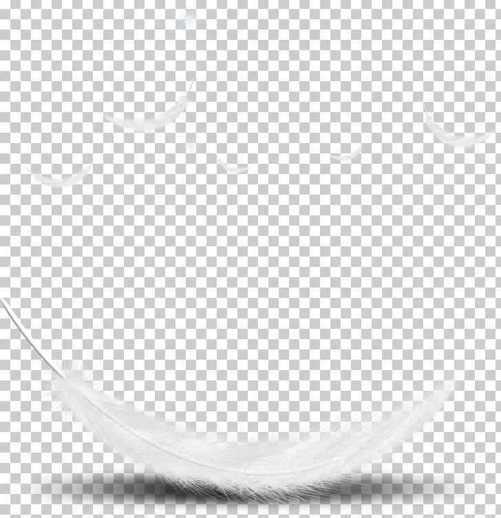 Feather Desktop Computer Font PNG, Clipart, Black And White, Circle, Closeup, Computer, Computer Wallpaper Free PNG Download