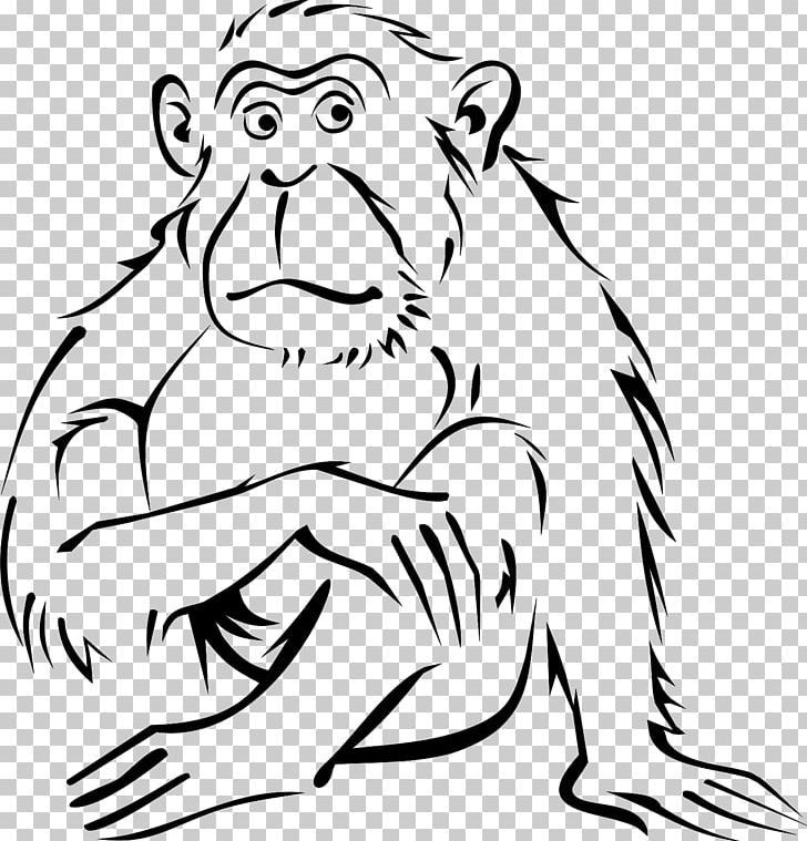 Monkey Coloring Book Drawing Black-and-white Colobus PNG, Clipart ...