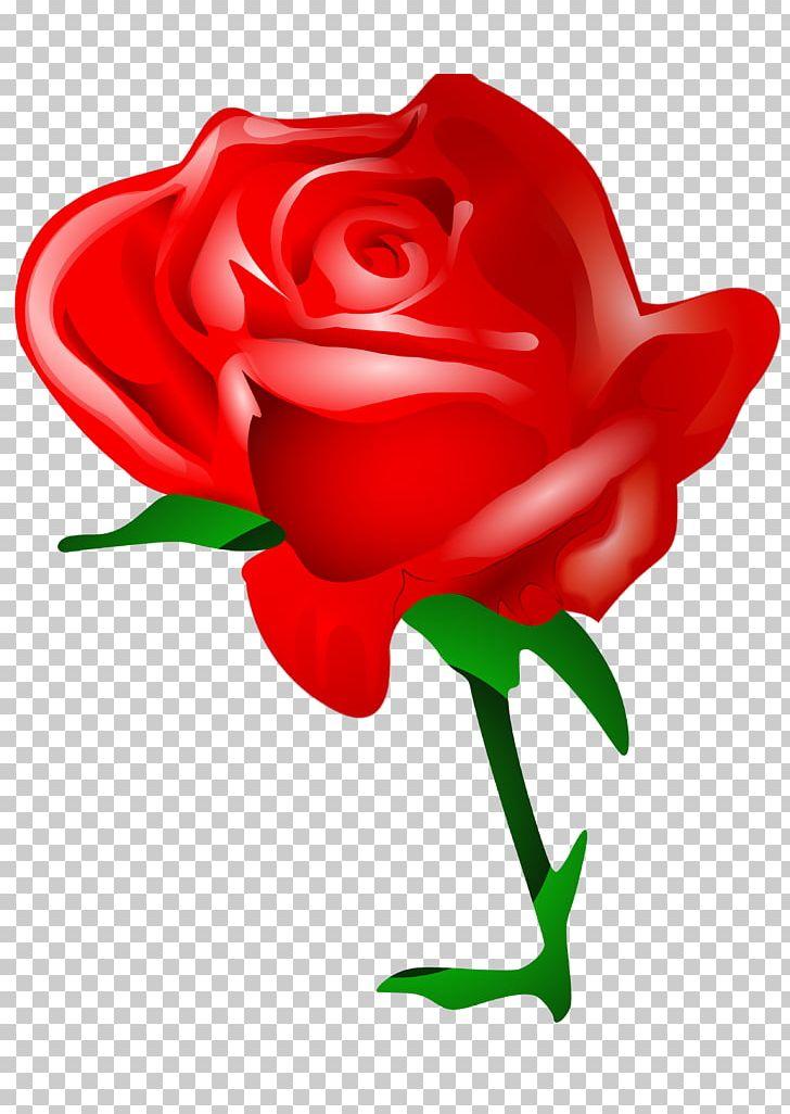 Flower Love Rose Png Clipart Cut Flowers Desktop