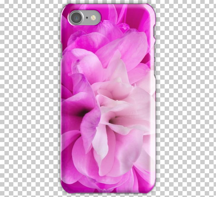 Pink M Mobile Phone Accessories RTV Pink Mobile Phones IPhone PNG, Clipart, Flower, Flowering Plant, Iphone, Lilac, Magenta Free PNG Download