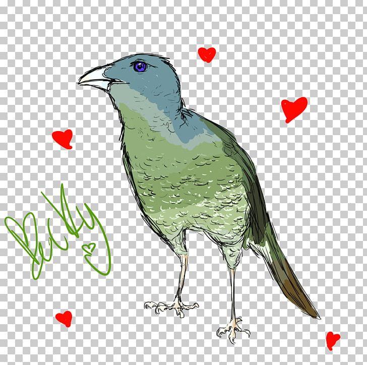 Beak Bird Digital Art Artist PNG, Clipart, Art, Artist, Beak, Bird, Deviantart Free PNG Download