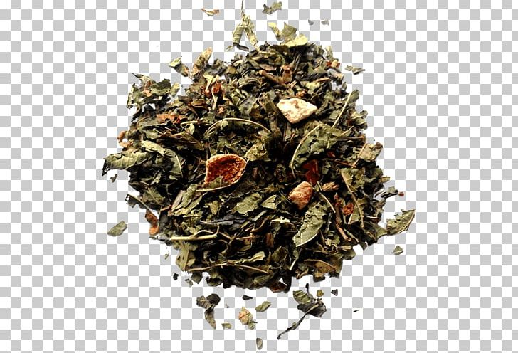 Hōjicha Green Tea Oolong Nilgiri Tea PNG, Clipart, Assam Tea, Bai Mudan, Bancha, Black Tea, Ceylon Tea Free PNG Download