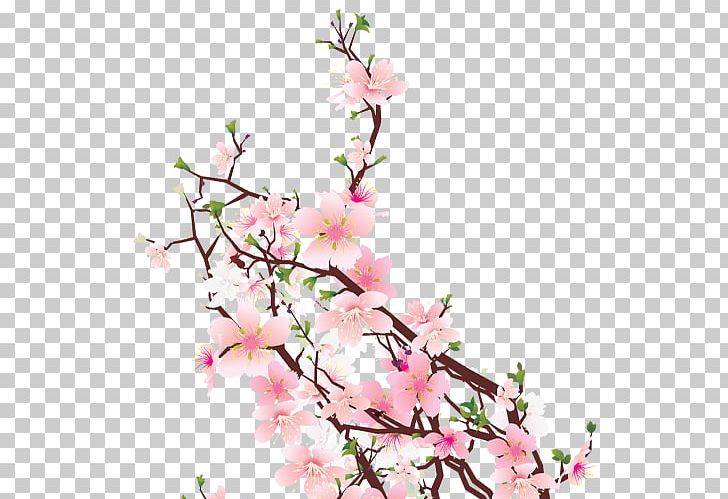 Cherry Blossom Cut Flowers Floral Design Floristry PNG, Clipart, Blossom, Branch, Cherry, Cherry Blossom, Cut Flowers Free PNG Download