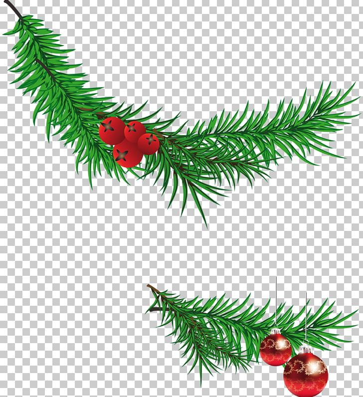 Santa Claus Christmas Tree Branch PNG, Clipart, Branch, Cartoon, Christma, Christmas, Christmas Decoration Free PNG Download