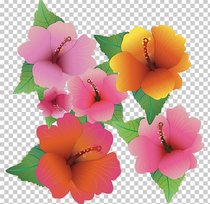 Hawaiian Hibiscus Flower Png Clipart Art Common Daisy Computer