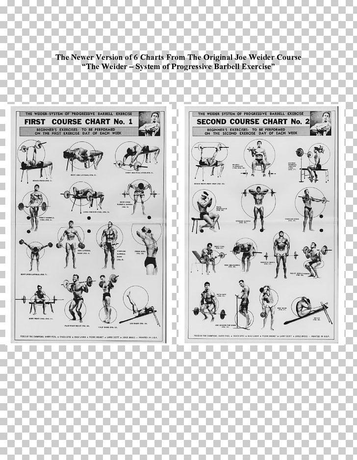 The Weider System Of Bodybuilding Joe Weider's Bodybuilding
