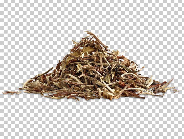 White Tea Golden Monkey Tea Nilgiri Tea Dianhong PNG, Clipart, Antioxidant, Assam Tea, Bai Mudan, Bancha, Biluochun Free PNG Download