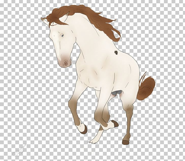 Mustang Stallion Pony Rein Halter PNG, Clipart,  Free PNG Download
