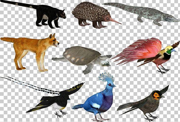 Zoo Tycoon 2: Jurassic Park Pack New Guinea Singing Dog Beak