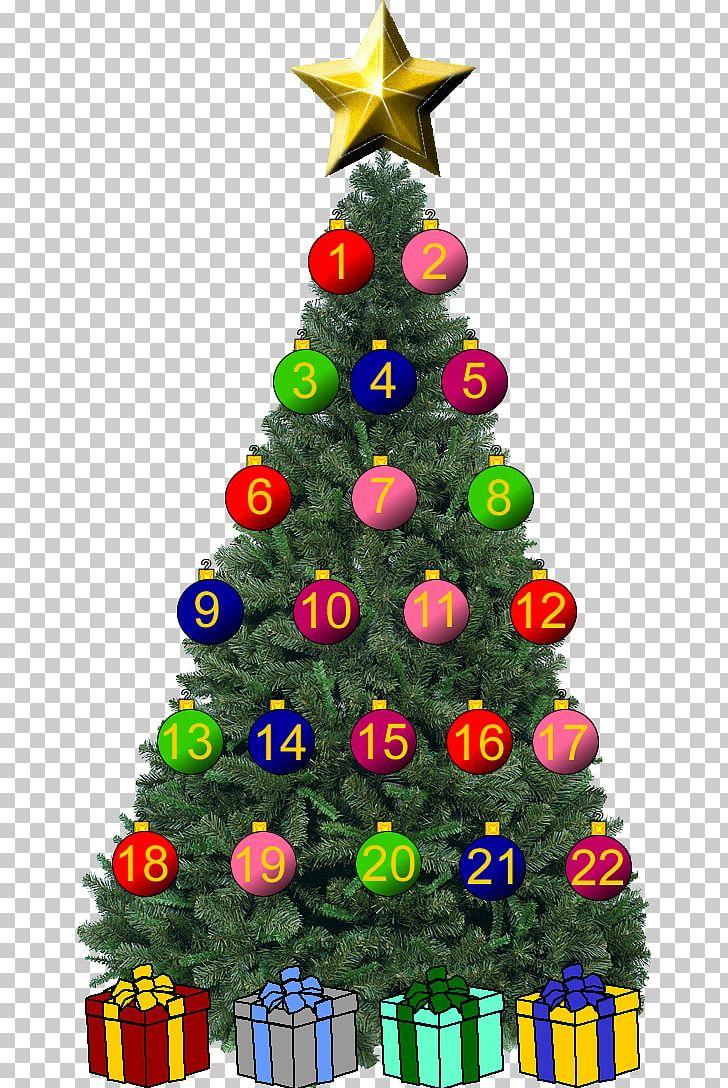 Christmas Tree Christmas Ornament Spruce Fir PNG, Clipart, Christmas, Christmas Decoration, Christmas Ornament, Christmas Tree, Conifer Free PNG Download
