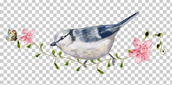 Bird Carpet Mat Floor PNG, Clipart, Beak, Bird, Branch, Cartoon Animals, Computer Graphics Free PNG Download
