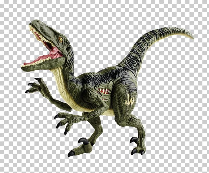 Velociraptor Tyrannosaurus Jurassic Park Dinosaur Toy PNG, Clipart, Animal Figure, B D Wong, Celebrities, Chris Pratt, Dinosaur Free PNG Download