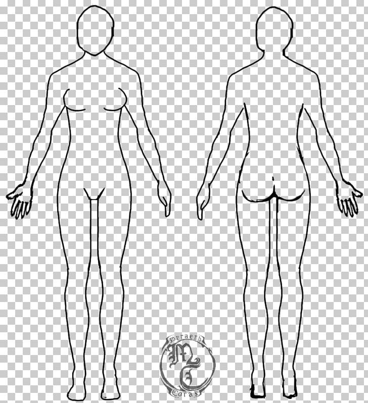 Diagram Of Body Drawing - Wiring Diagram Img