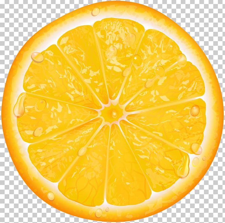 Lemon Orange Slice PNG, Clipart, Auglis, Citric Acid, Citron, Citrus, Clip Art Free PNG Download