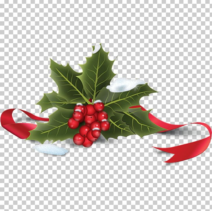 Christmas Icon Png.Common Holly Christmas Icon Png Clipart Aquifoliaceae