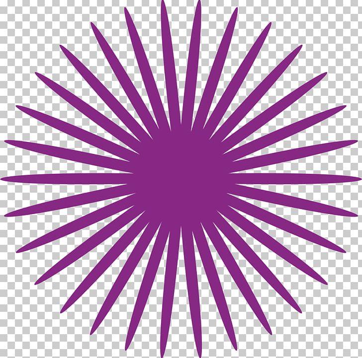 Purple Circle PNG, Clipart, Cartoon, Circle, Circle Arrows, Circle