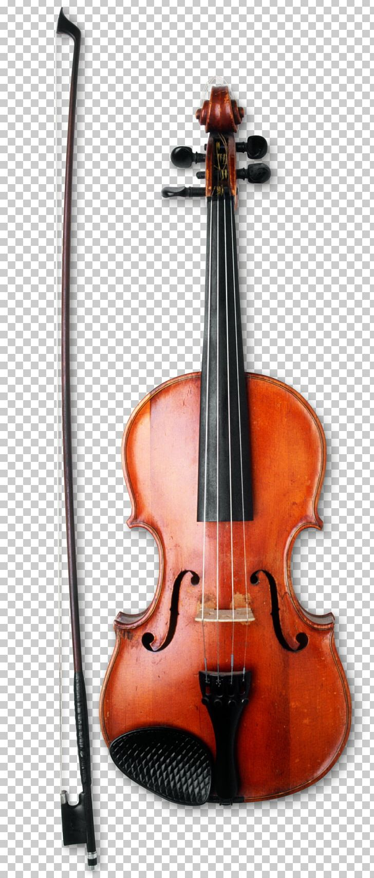 Violin Musical Instruments Bow String Instruments Viola PNG, Clipart, Bass Guitar, Bass Violin, Bluegrass, Bow, Bowed String Instrument Free PNG Download
