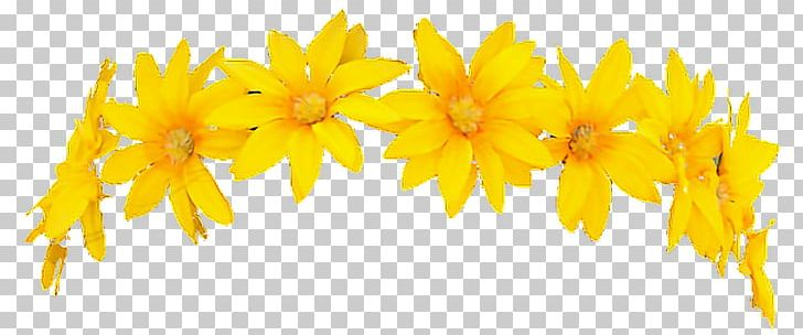 Flower crown yellow. Wreath png clipart avatan