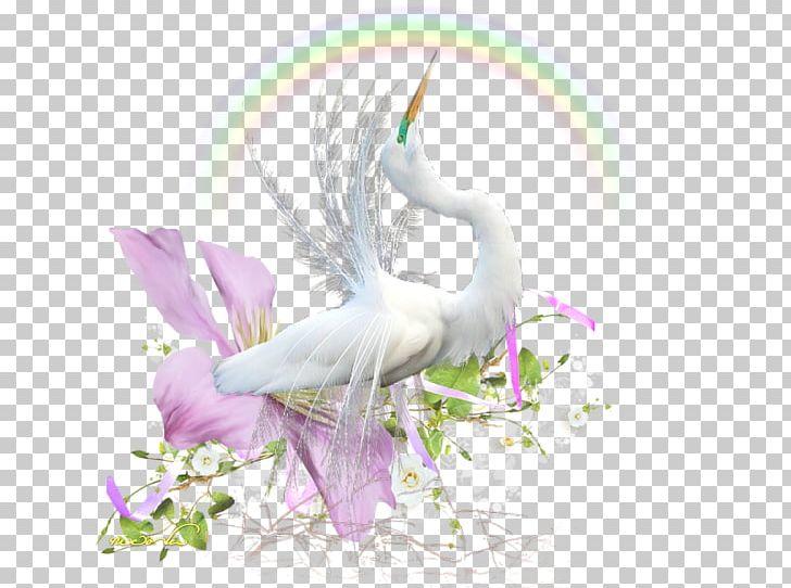Water Bird Beak Desktop PNG, Clipart, Animal, Animals, Beak, Bird, Computer Free PNG Download