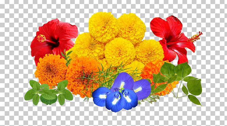 Cut Flowers Floral Design Floristry Flower Bouquet PNG, Clipart, Aarti, Annual Plant, Cut Flowers, Floral Design, Floristry Free PNG Download