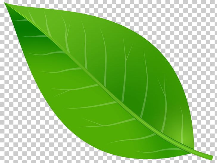 Leaf PNG, Clipart, Autumn Leaf Color, Blue, Clipart, Clip Art, Color Free PNG Download
