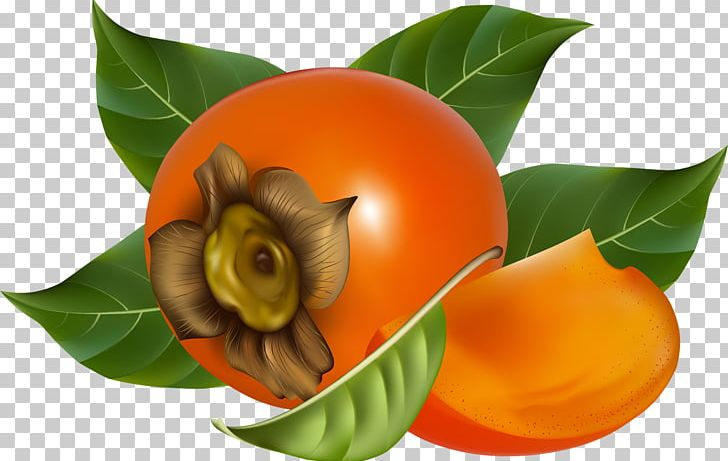 Japanese Persimmon Fruit PNG, Clipart, Diospyros, Ebony Trees And Persimmons, Food, Fruit, Fruit Nut Free PNG Download
