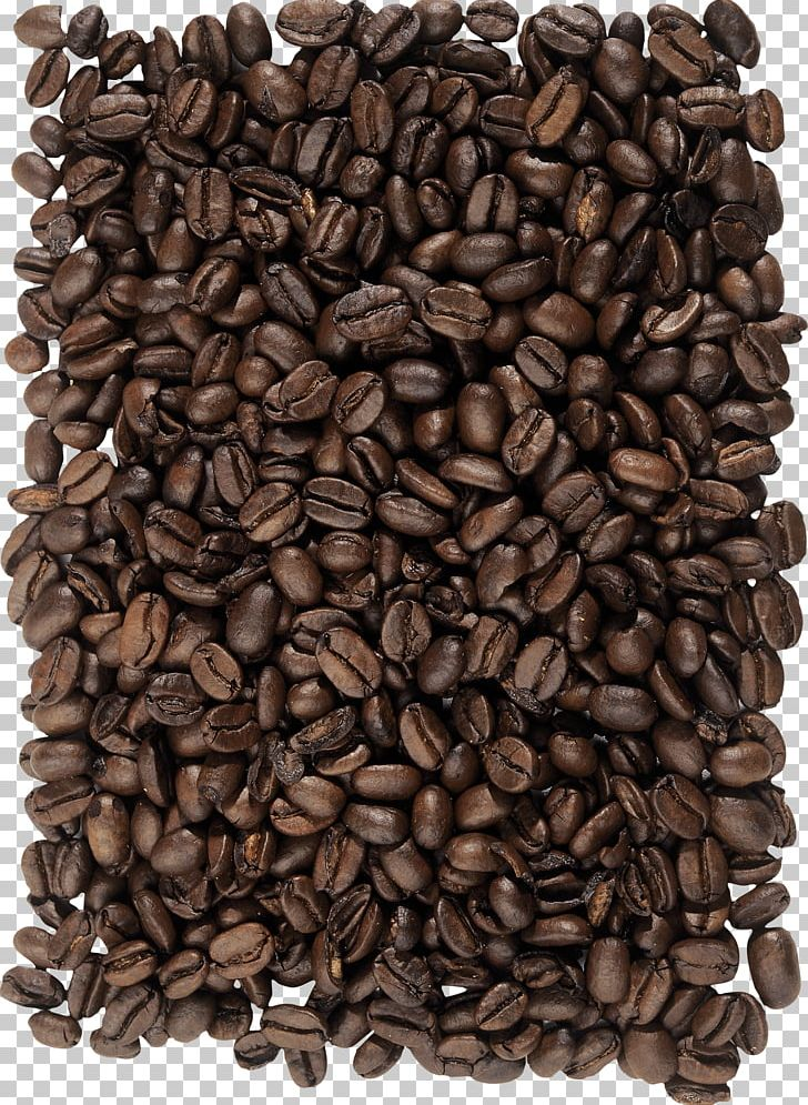 Coffee Bean Cappuccino Cafe PNG, Clipart, Bean, Beans, Caffeine, Caryopsis, Cereal Free PNG Download