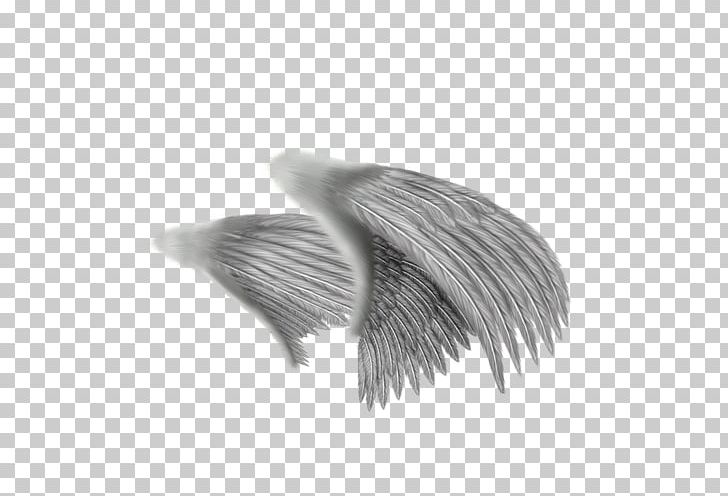 Drawing Angel Feather PNG, Clipart, Angel Wing, Angel Wings, Art, Beak, Black And White Free PNG Download