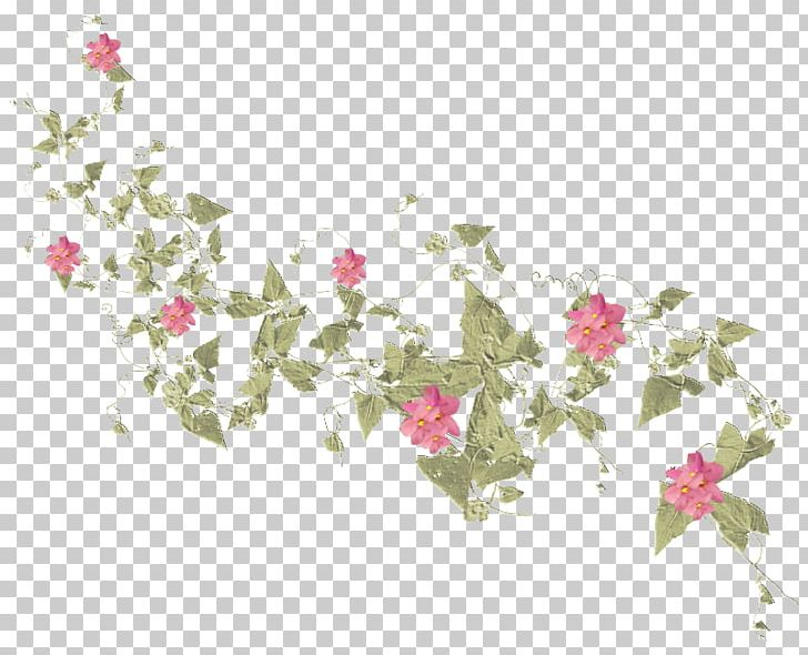 Floral Design Rose Family Petal Pattern PNG, Clipart, Art, Branch, Branching, Family, Flora Free PNG Download