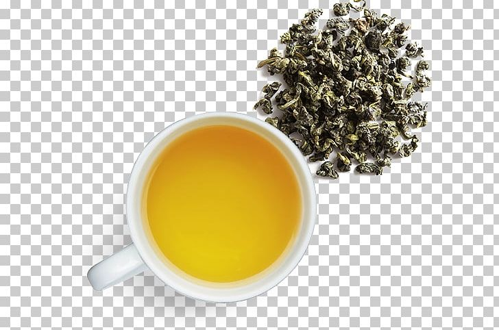 Hōjicha Oolong Nilgiri Tea Pouchong PNG, Clipart, Assam Tea, Bancha, Ceylon Tea, Cup, Da Hong Pao Free PNG Download