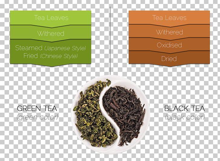 Green Tea Tea Leaf Grading Oolong White Tea PNG, Clipart, Assam Tea, Black Tea, Brand, Camellia Sinensis, Ceylon Tea Free PNG Download