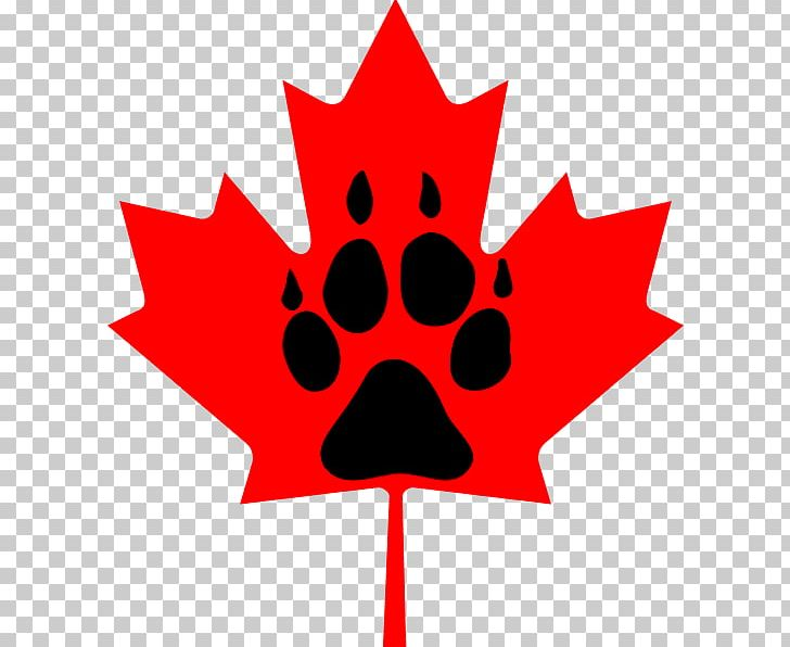 Flag Of Canada Maple Leaf PNG, Clipart, Animals, Artwork, Canada, Cryptocurrency Wallet, Flag Of Canada Free PNG Download