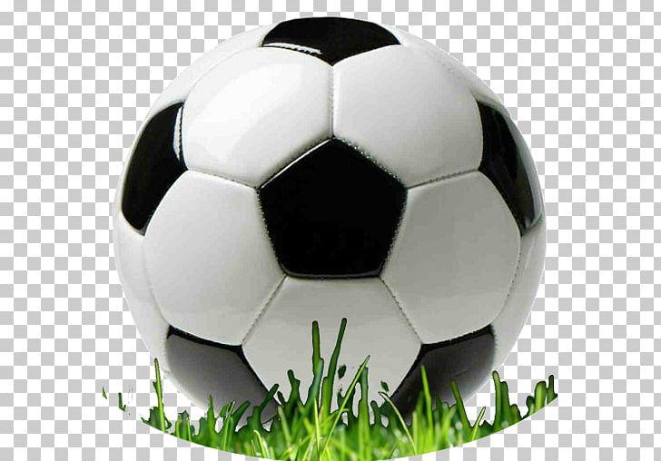 Sporting Goods Football Ball Game PNG, Clipart, Anika, Ball, Ball Game, Baseball, Cricket Free PNG Download