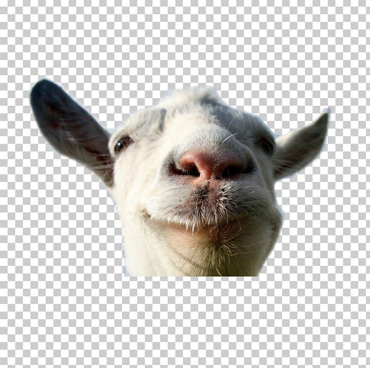 Goat Simulator Escape Goat Space Goat Xbox 360 PNG, Clipart