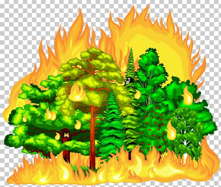 Forest Fire PNG, Clipart, Art, Cartoon, Catch Fire, Combustion, Computer Icons Free PNG Download
