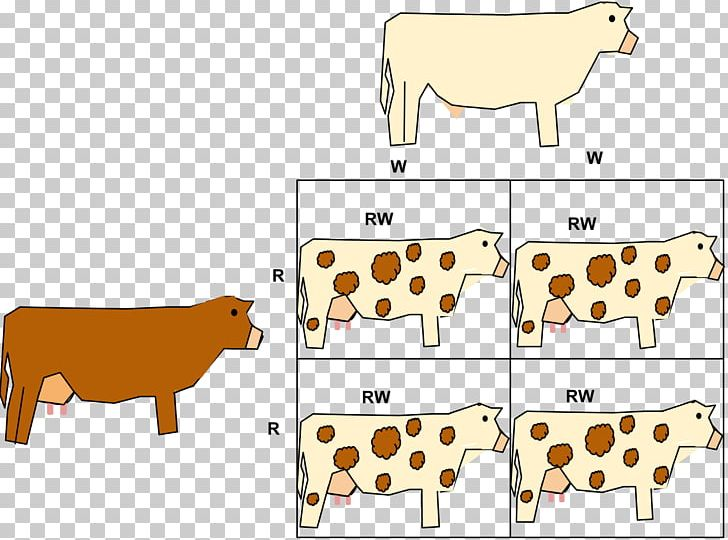 Codominance Allele Phenotype Gene PNG, Clipart, Animal Figure, Area, Blood Type, Calf, Cattle Like Mammal Free PNG Download