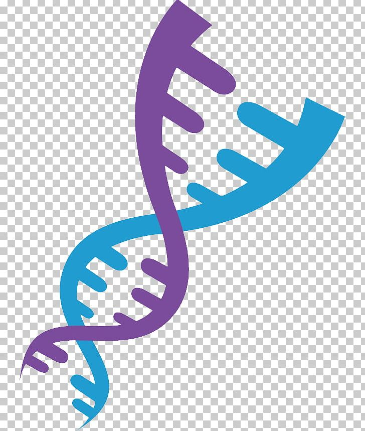 DNA PNG, Clipart, Dna Free PNG Download