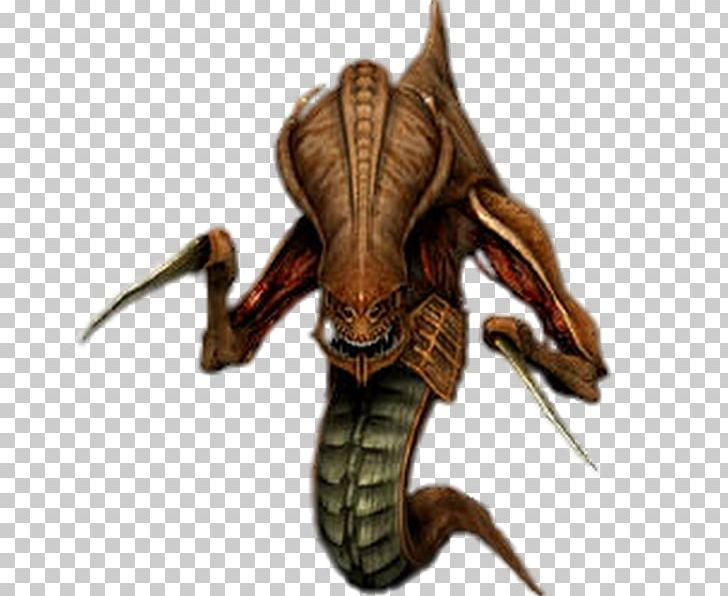 Starcraft Ii Wings Of Liberty Starcraft Brood War Zerg