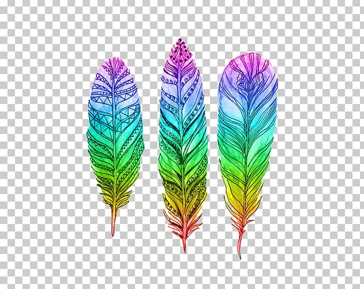 Bird Pin Feather Drawing Png Clipart Animals Bird Color Colored Colored Feathers Free Png Download