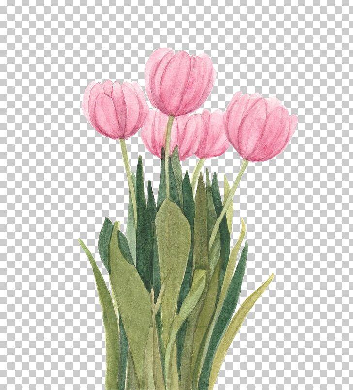 Tulip Watercolor Painting Floral Design Flower PNG, Clipart, Art, Cut Flowers, Floristry, Flower Arranging, Flowering Plant Free PNG Download