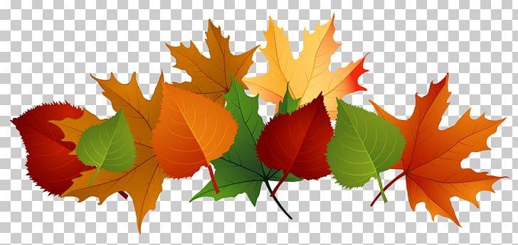 Autumn Leaf Color PNG, Clipart, Autumn, Autumn Leaf Color, Byte, Clip Art, Clipart Free PNG Download